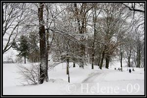 Kronobergsparken i snö. Foto: http://webmosterhelene.blogspot.se/